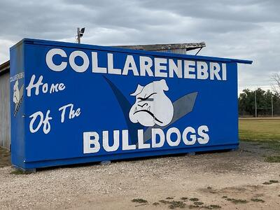 3-CollyBullgogs-KPalmer